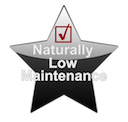 Low Maintenance Roofing